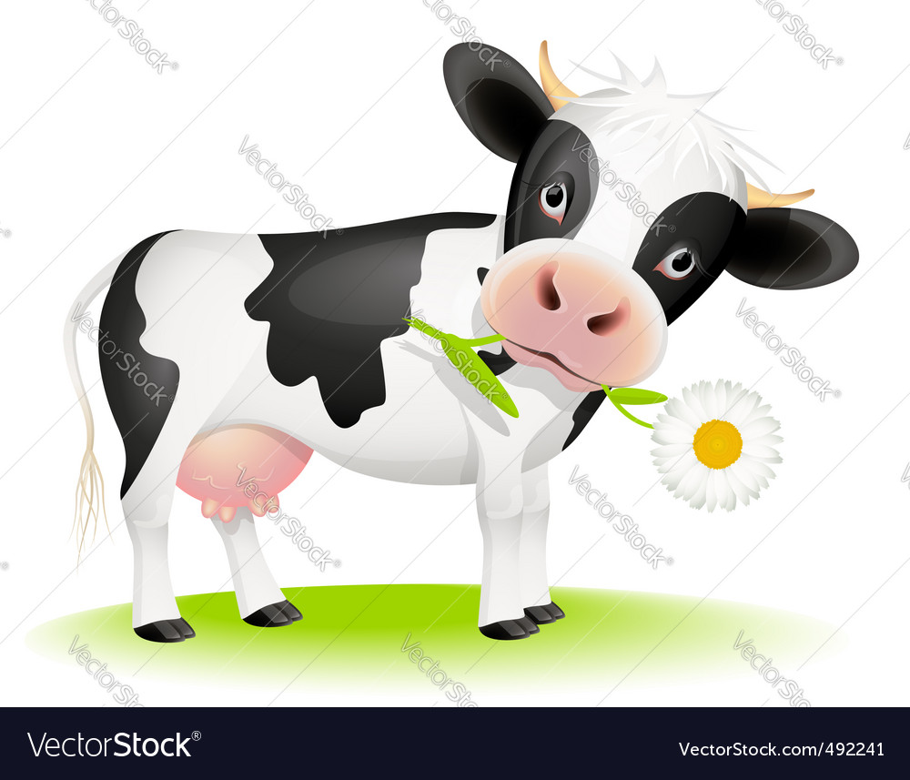 Cow eating daisy vector | Price: 3 Credit (USD $3)