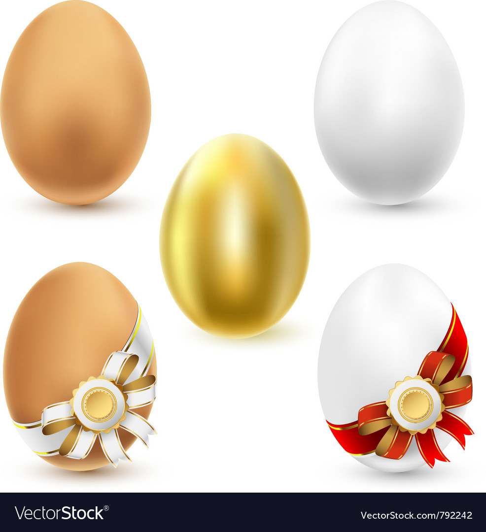 Chicken eggs vector | Price: 1 Credit (USD $1)
