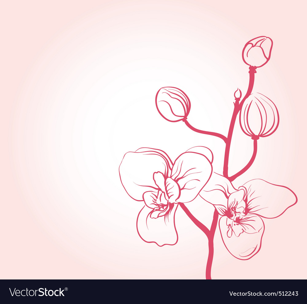 Sakura flower vector | Price: 1 Credit (USD $1)