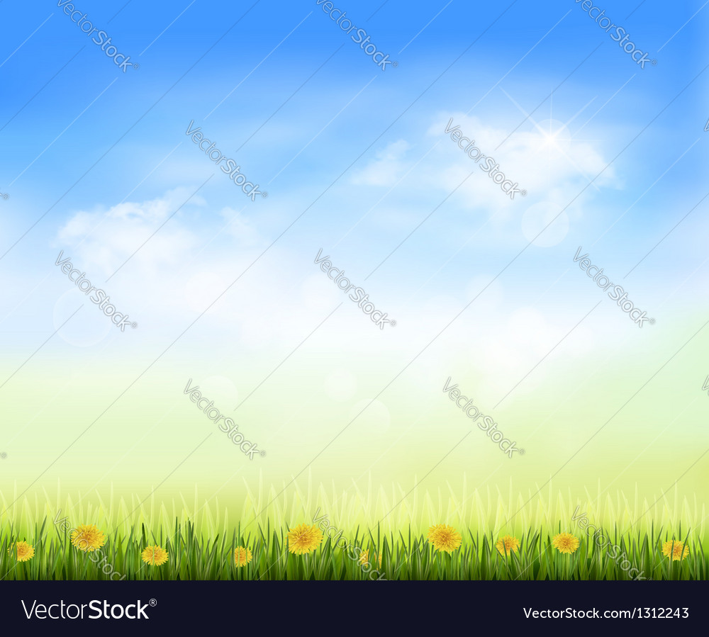 Summer gaze background with blue sky and a field vector | Price: 1 Credit (USD $1)