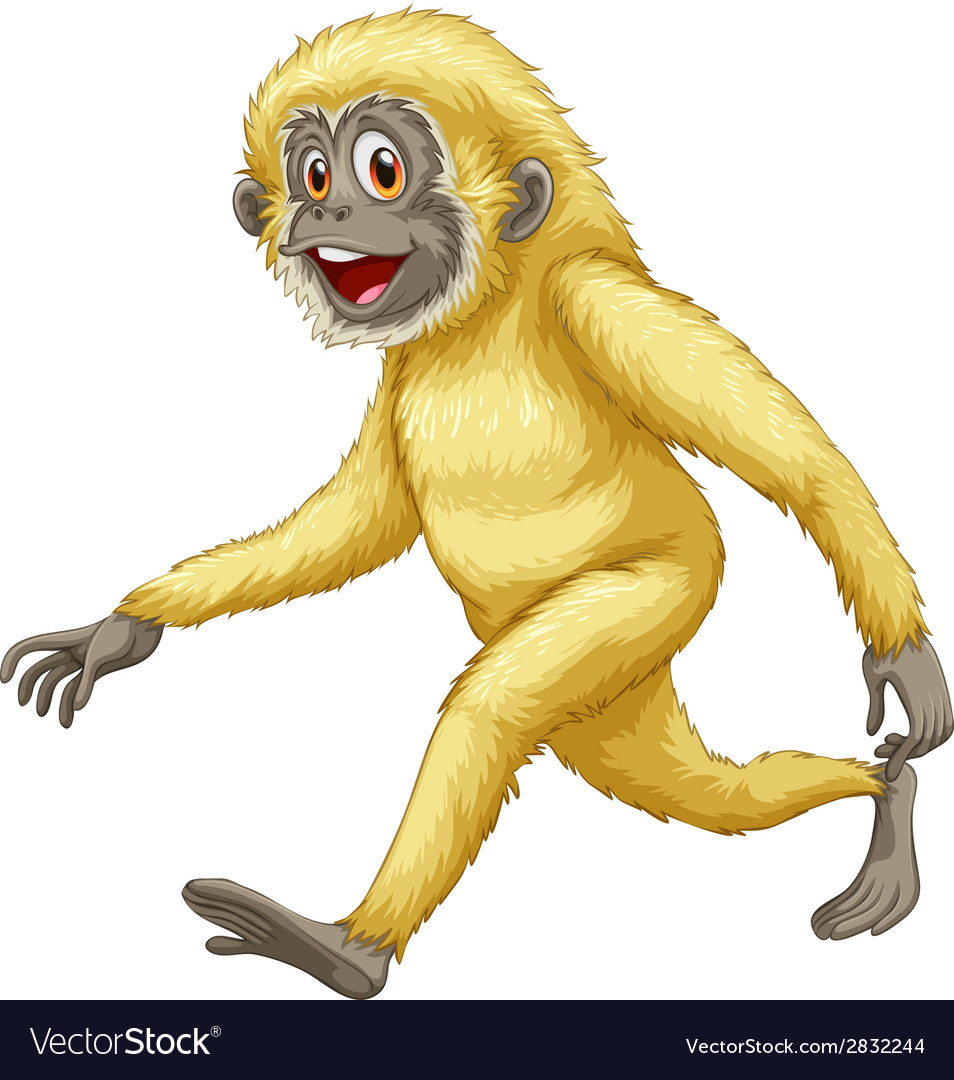 A yellow gorilla vector | Price: 1 Credit (USD $1)