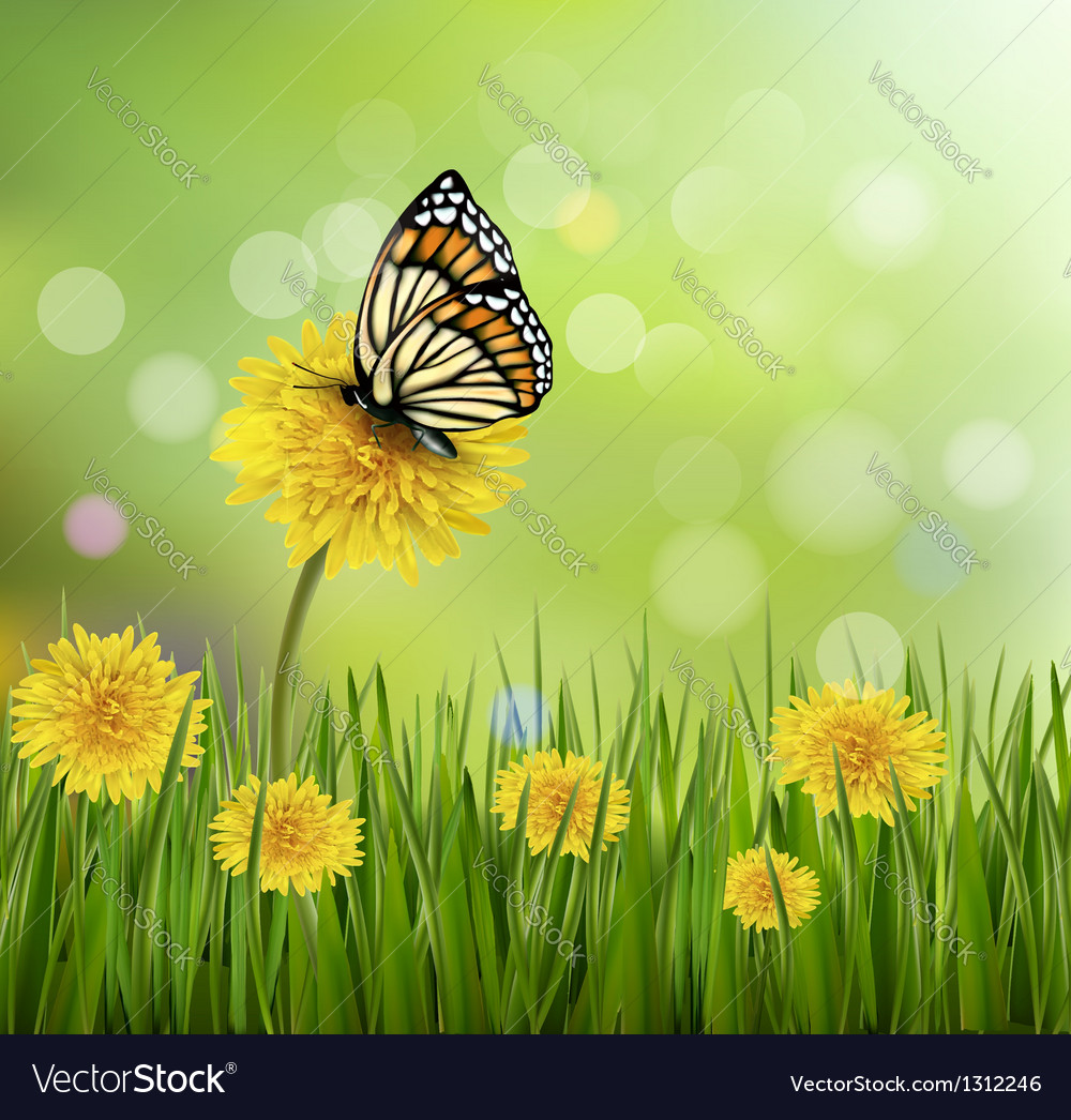 Green summer background with dandelions and a vector | Price: 3 Credit (USD $3)