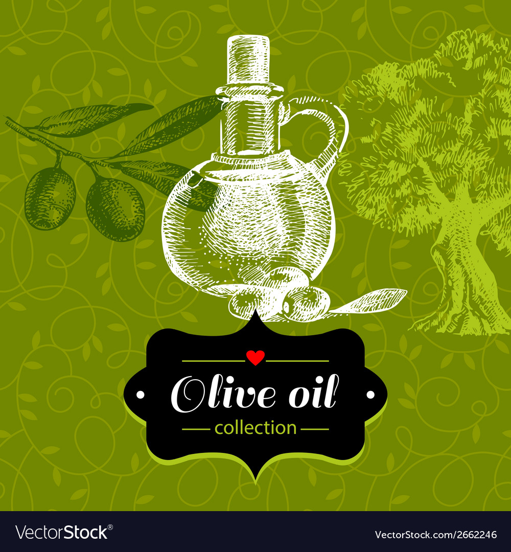 Vintage olive background with hand drawn sketch vector | Price: 1 Credit (USD $1)