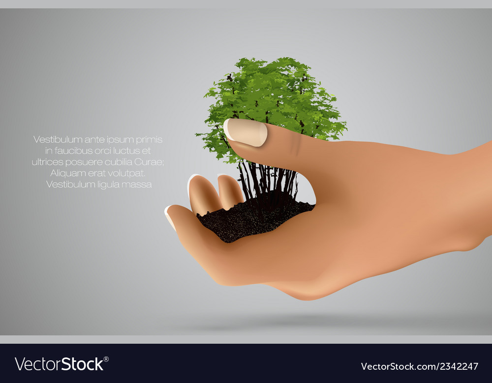 Handful of ground with green sprout in her hands vector | Price: 1 Credit (USD $1)