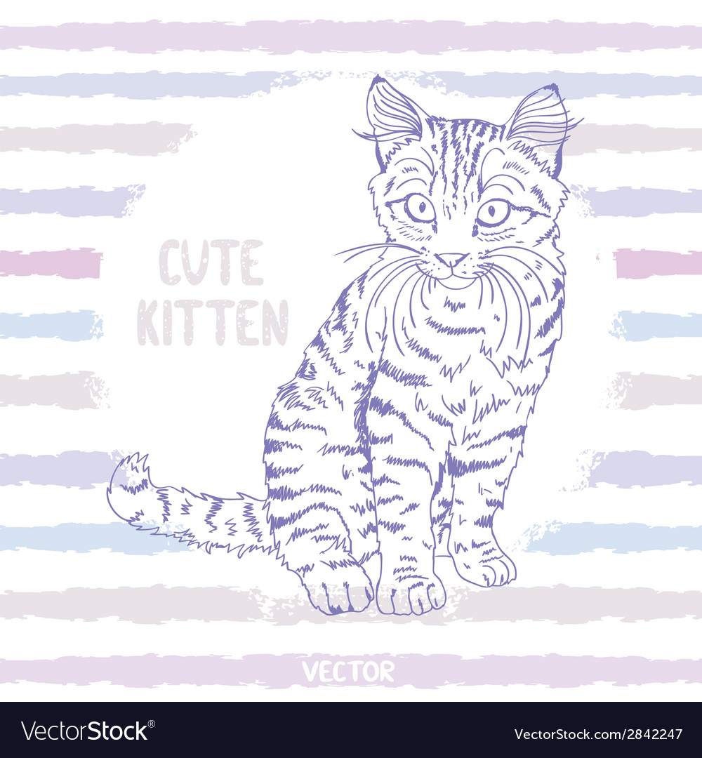 Kitten sketch vector | Price: 1 Credit (USD $1)