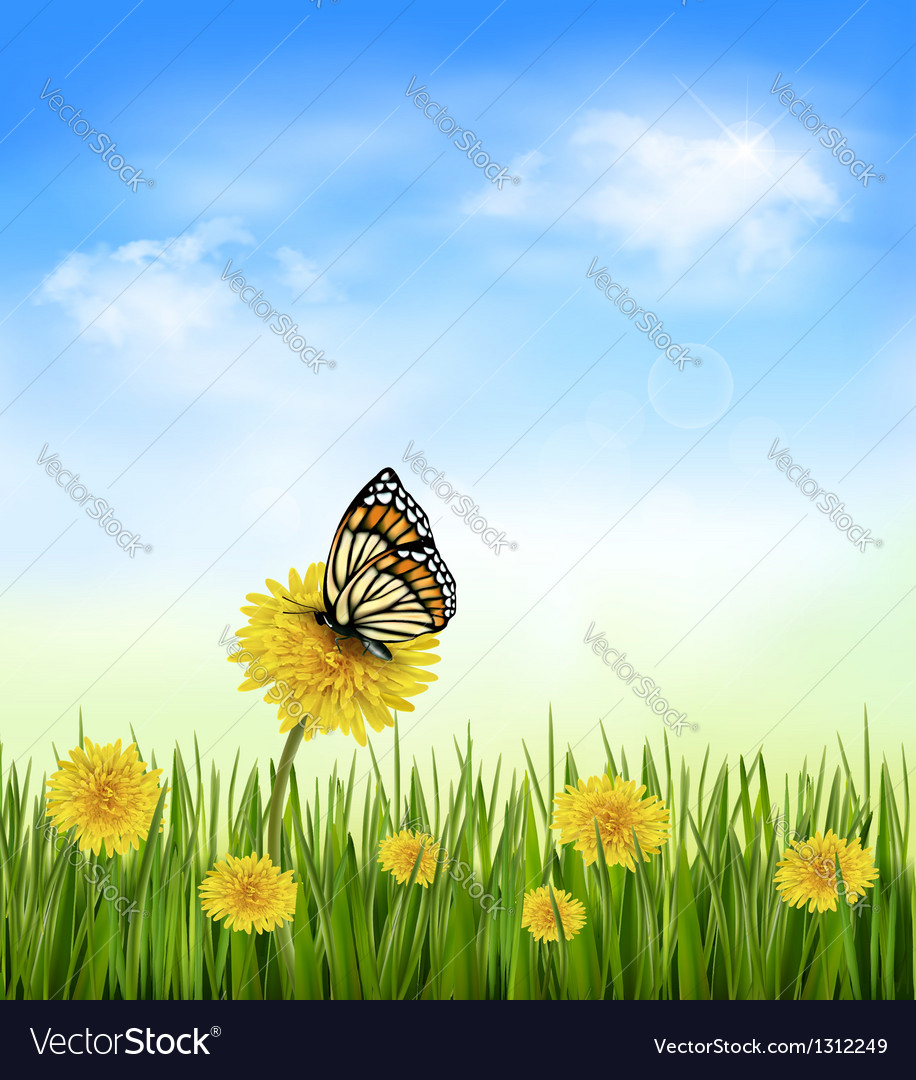 Summer background with dandelions and a butterfly vector | Price: 3 Credit (USD $3)