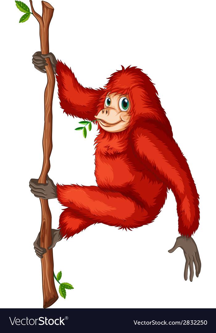 A playful red orangutan vector | Price: 1 Credit (USD $1)