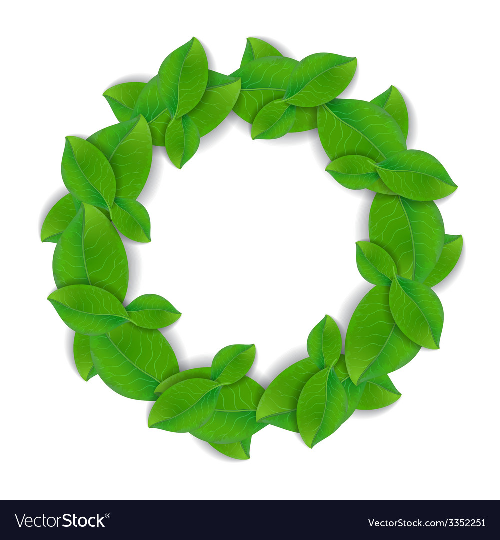 Green leaves wreath vector | Price: 1 Credit (USD $1)