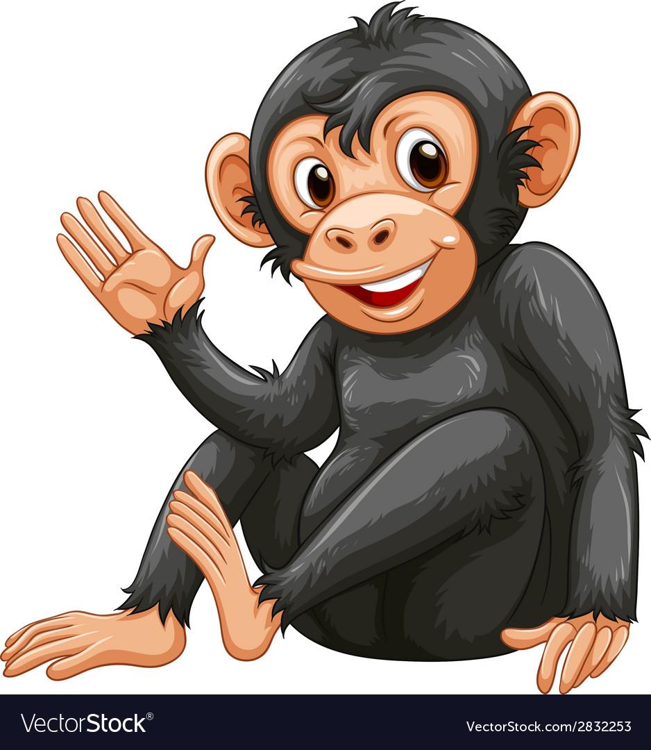 A chimpanzee vector | Price: 1 Credit (USD $1)
