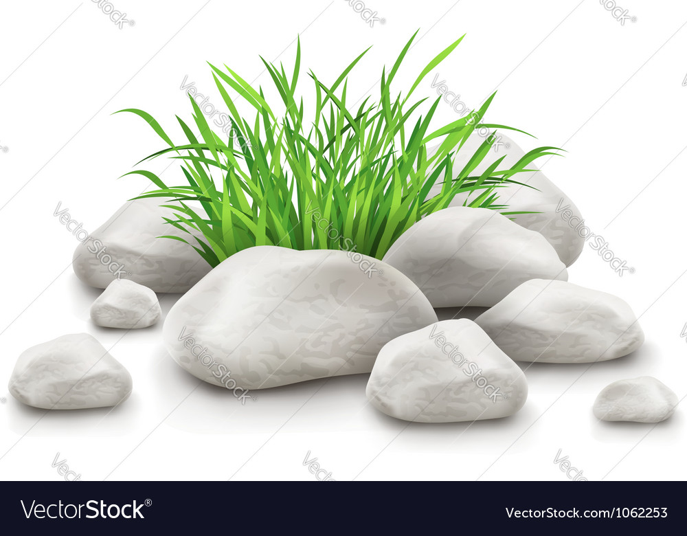 Green grass in stones as vector | Price: 1 Credit (USD $1)