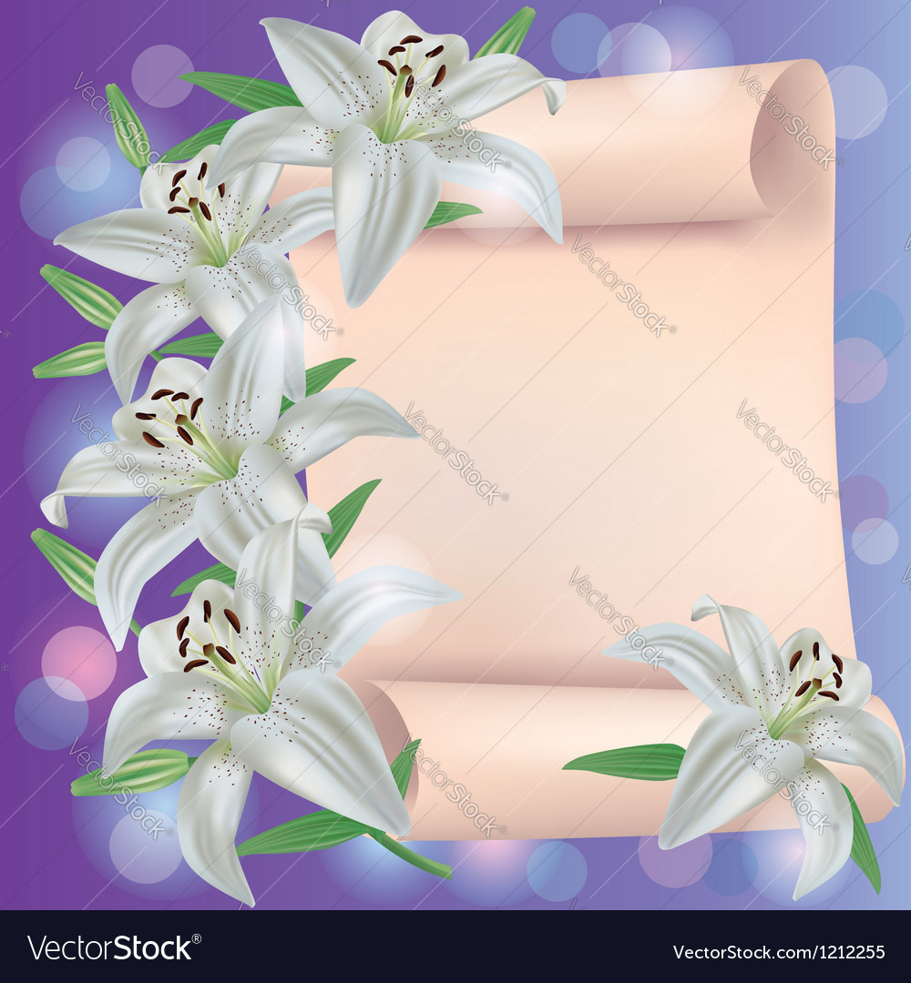 Greeting or invitation card with lily flowers vector | Price: 1 Credit (USD $1)