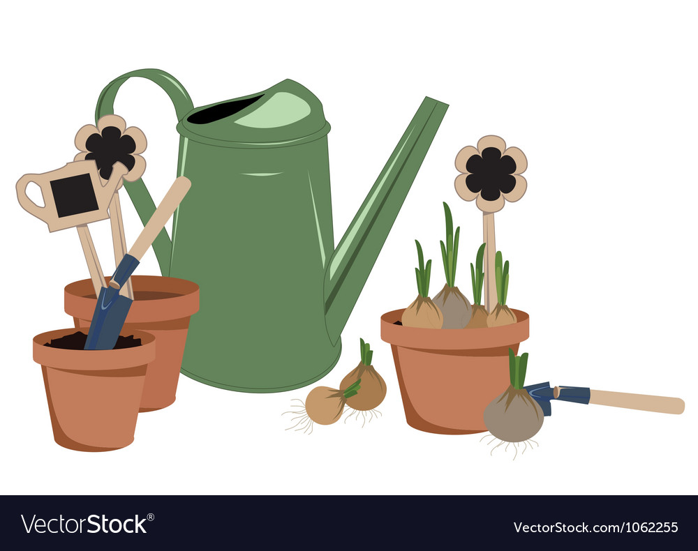 Planting bulbs in pots vector | Price: 1 Credit (USD $1)