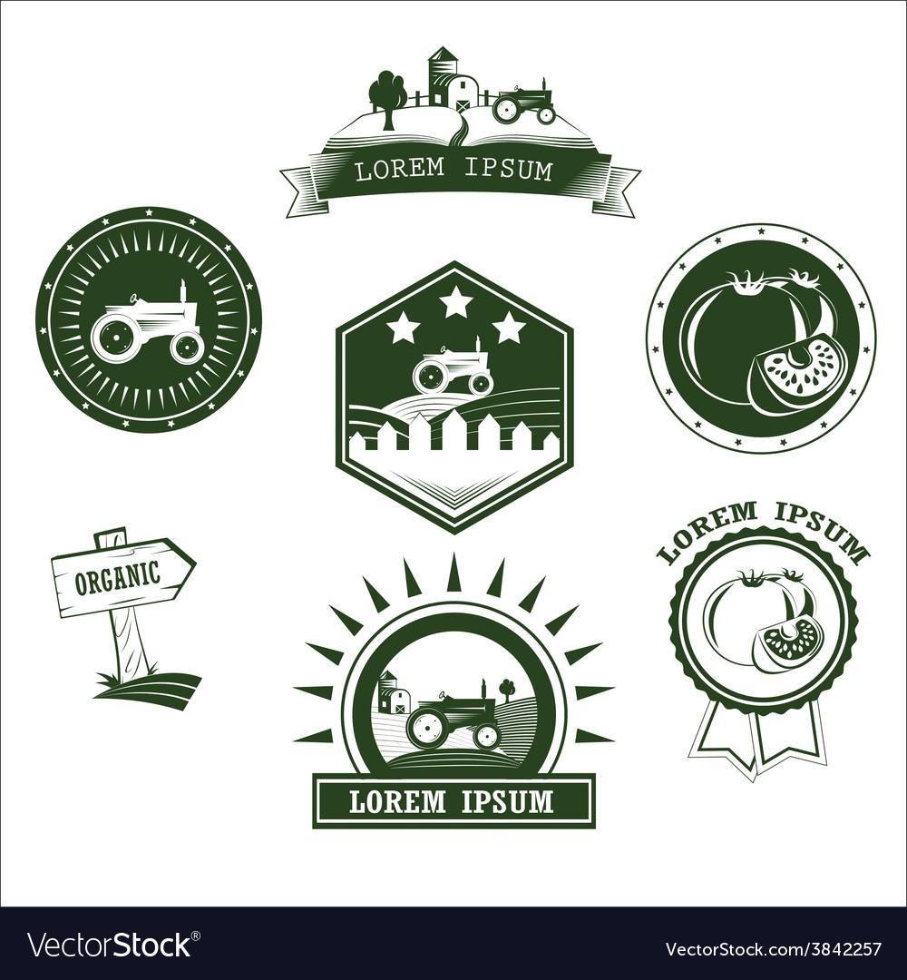 Set of retro vintage farm fresh labels badges and vector | Price: 1 Credit (USD $1)