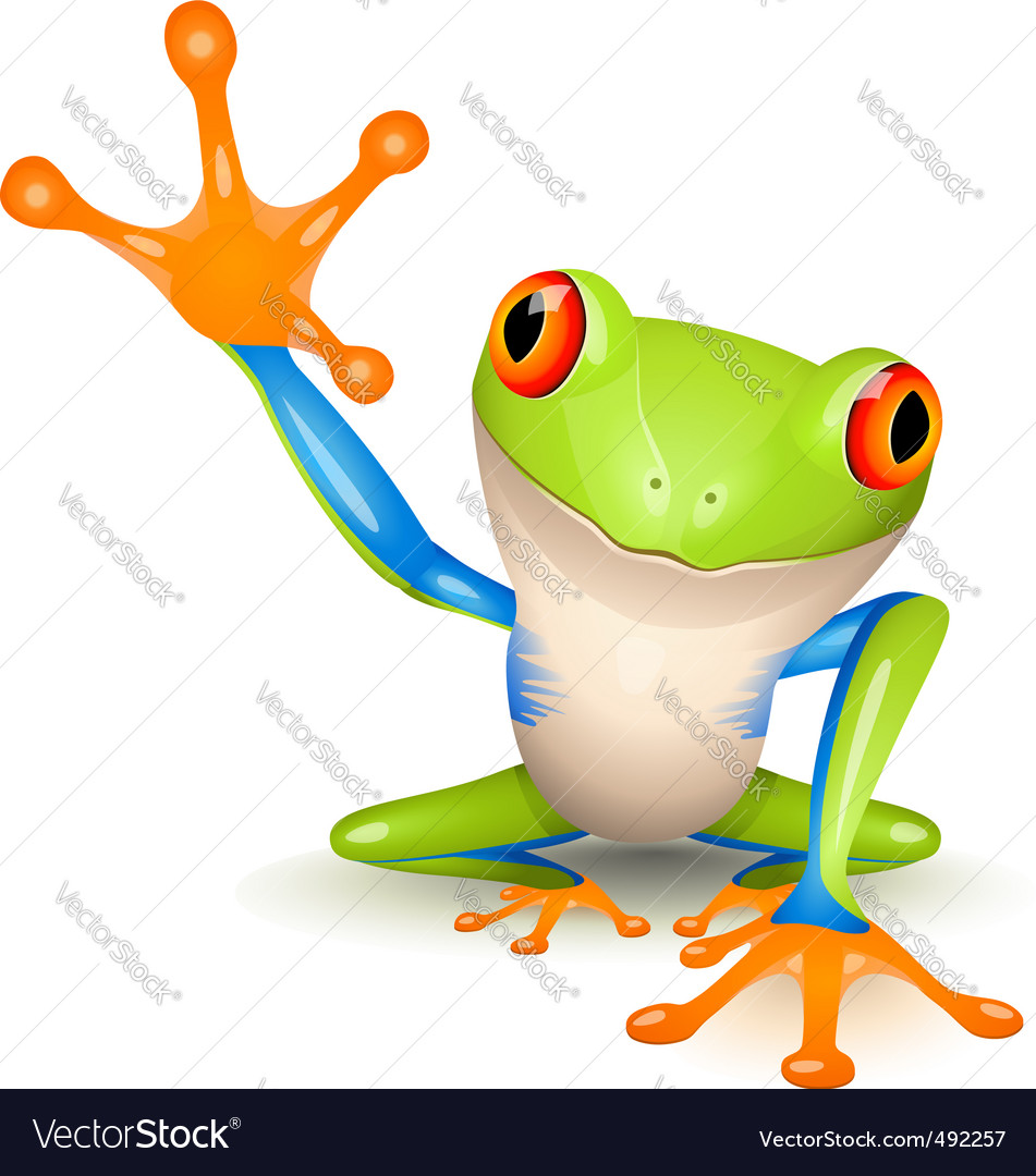 Tree frog vector | Price: 3 Credit (USD $3)