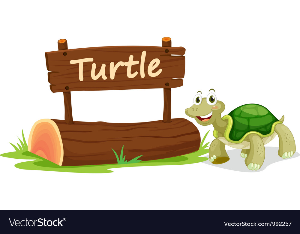 Turtle zoo sign vector | Price: 1 Credit (USD $1)