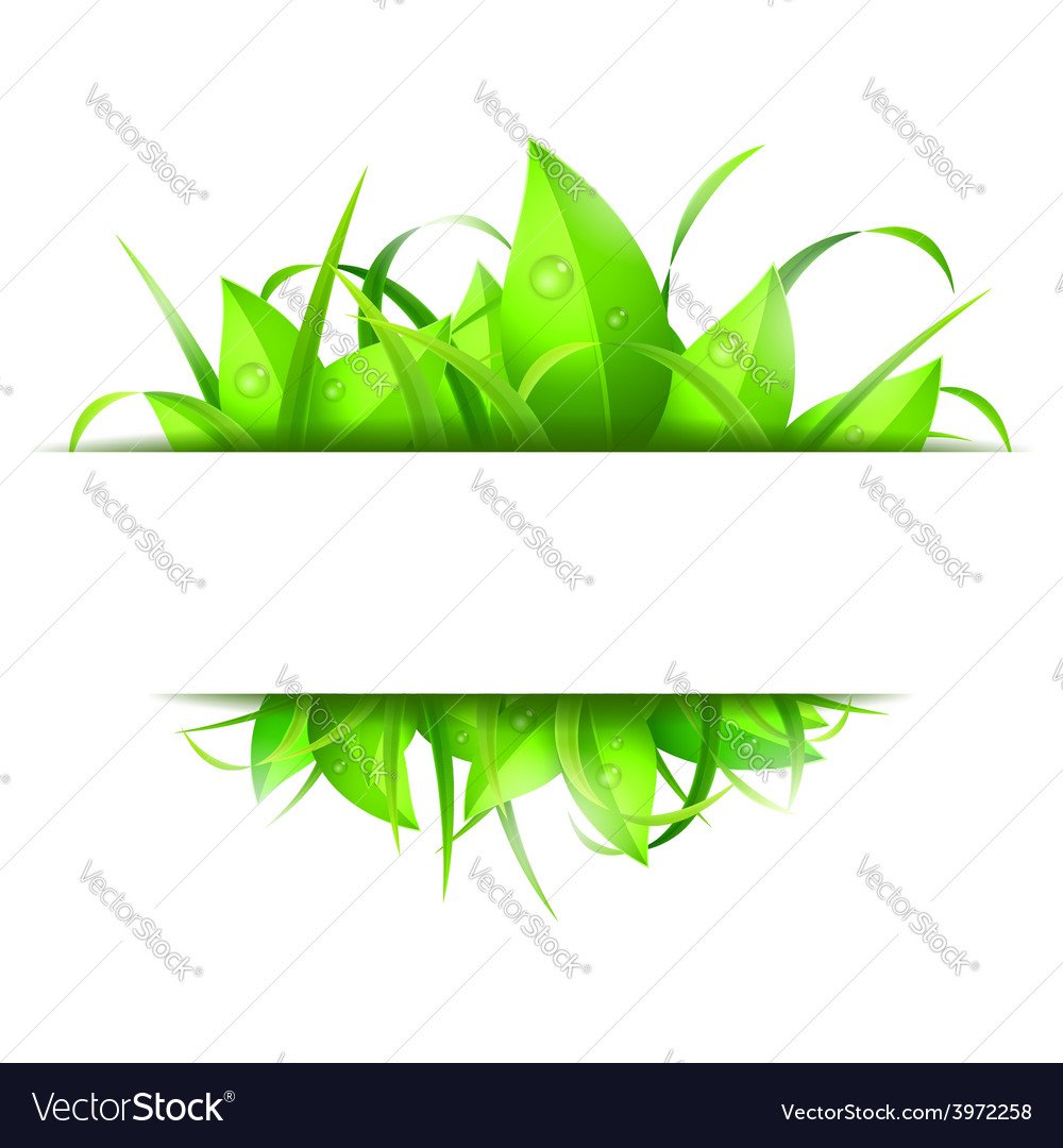 Green grass and leaves banner vector | Price: 1 Credit (USD $1)