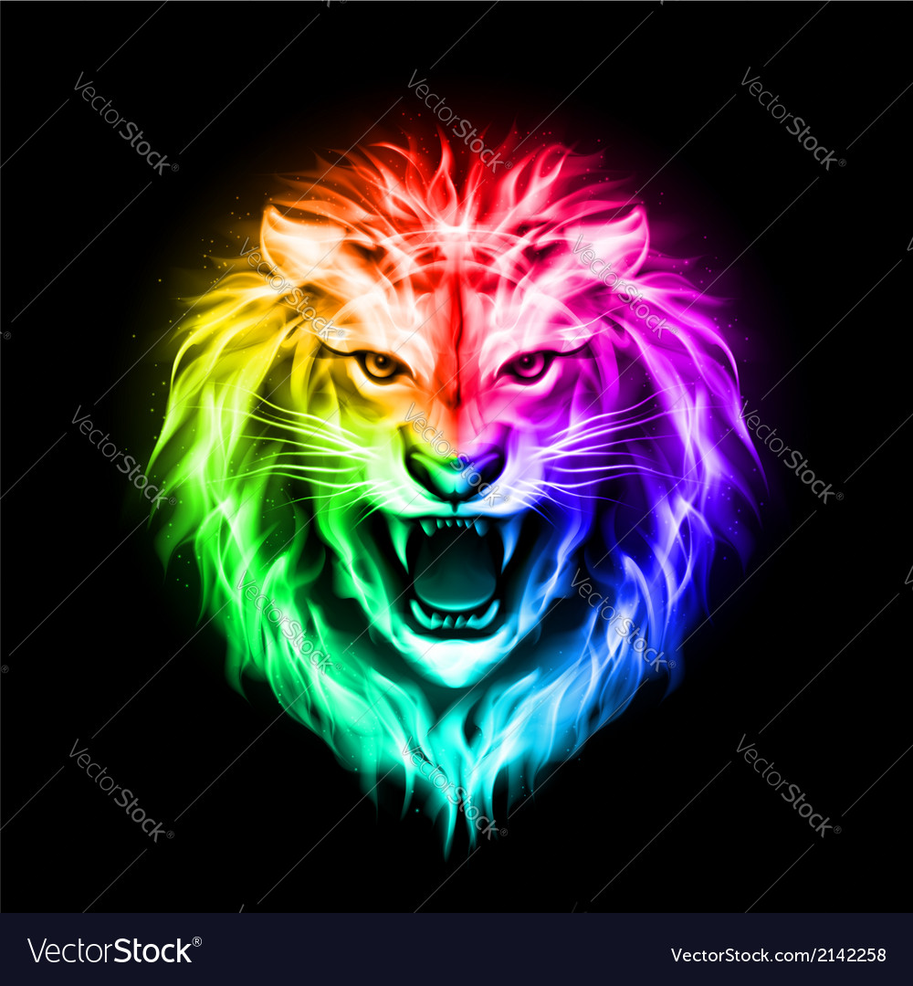 Head of colorful fire lion vector | Price: 1 Credit (USD $1)