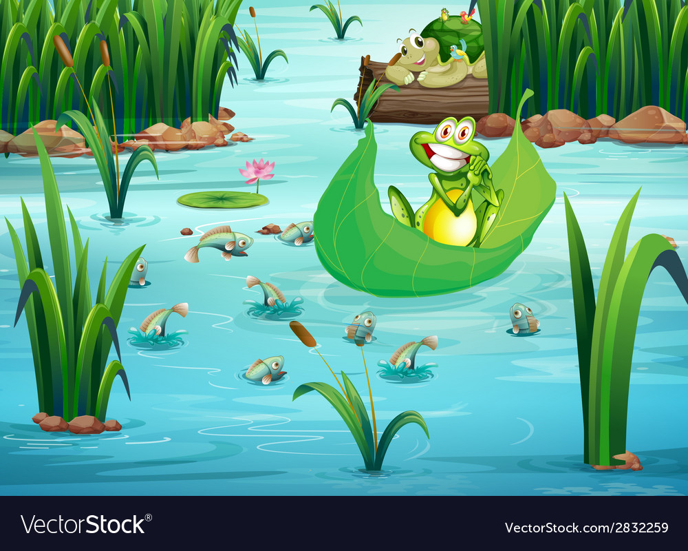 A playful frog and a turtle at the pond vector | Price: 1 Credit (USD $1)