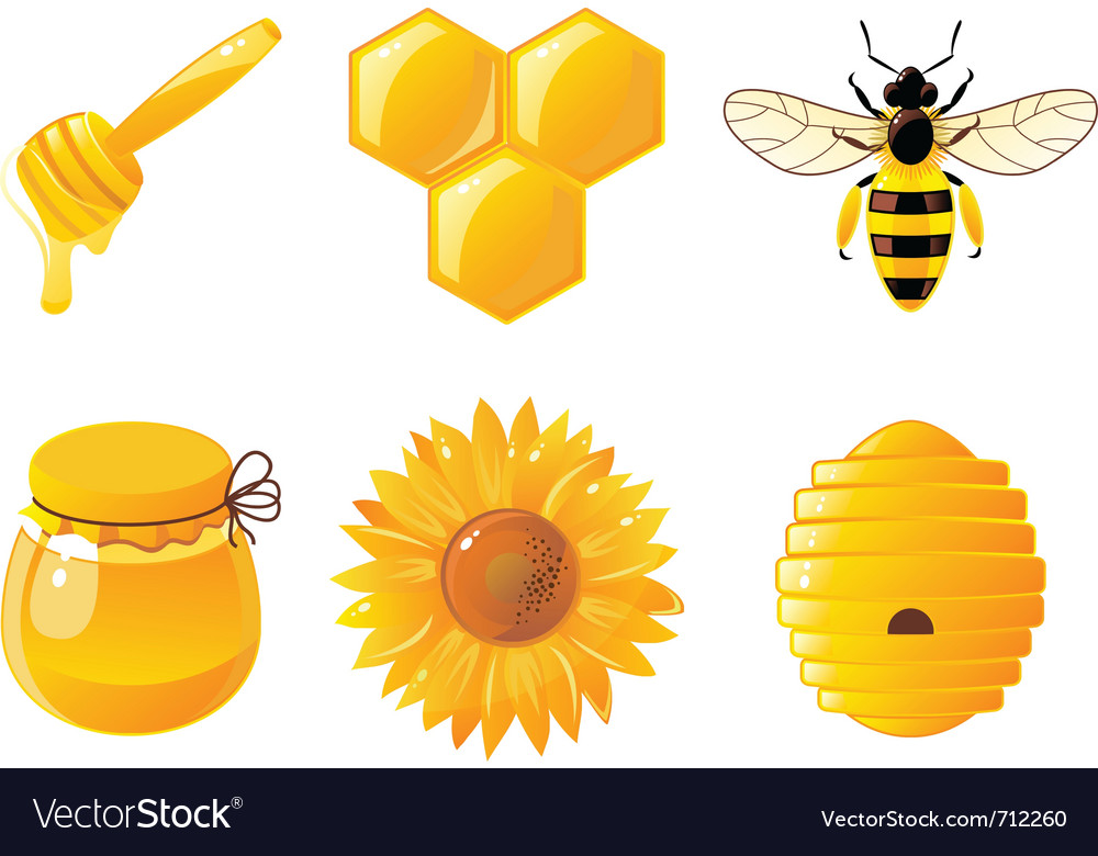 Honey icons vector | Price: 1 Credit (USD $1)