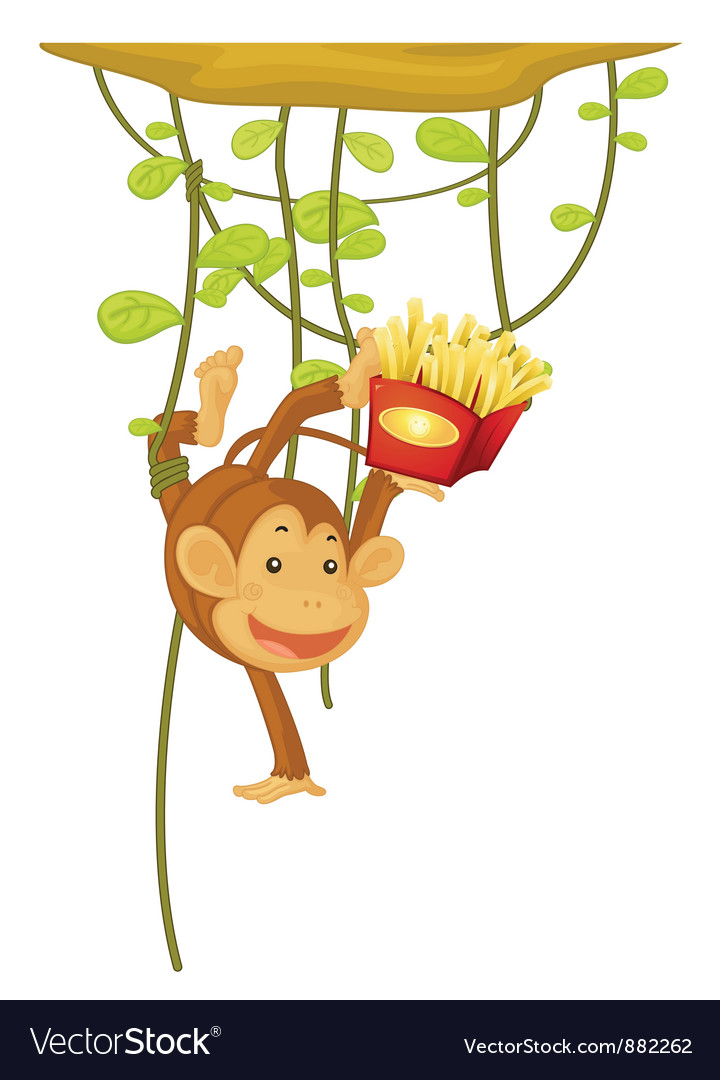 Monkey vector | Price: 5 Credit (USD $5)
