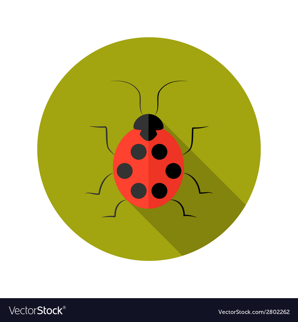 Red lady bug flat icon vector | Price: 1 Credit (USD $1)