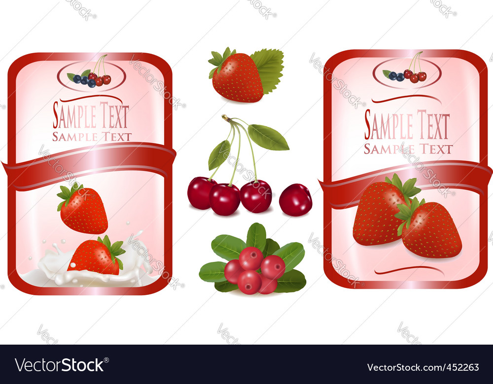 Food labels vector | Price: 3 Credit (USD $3)