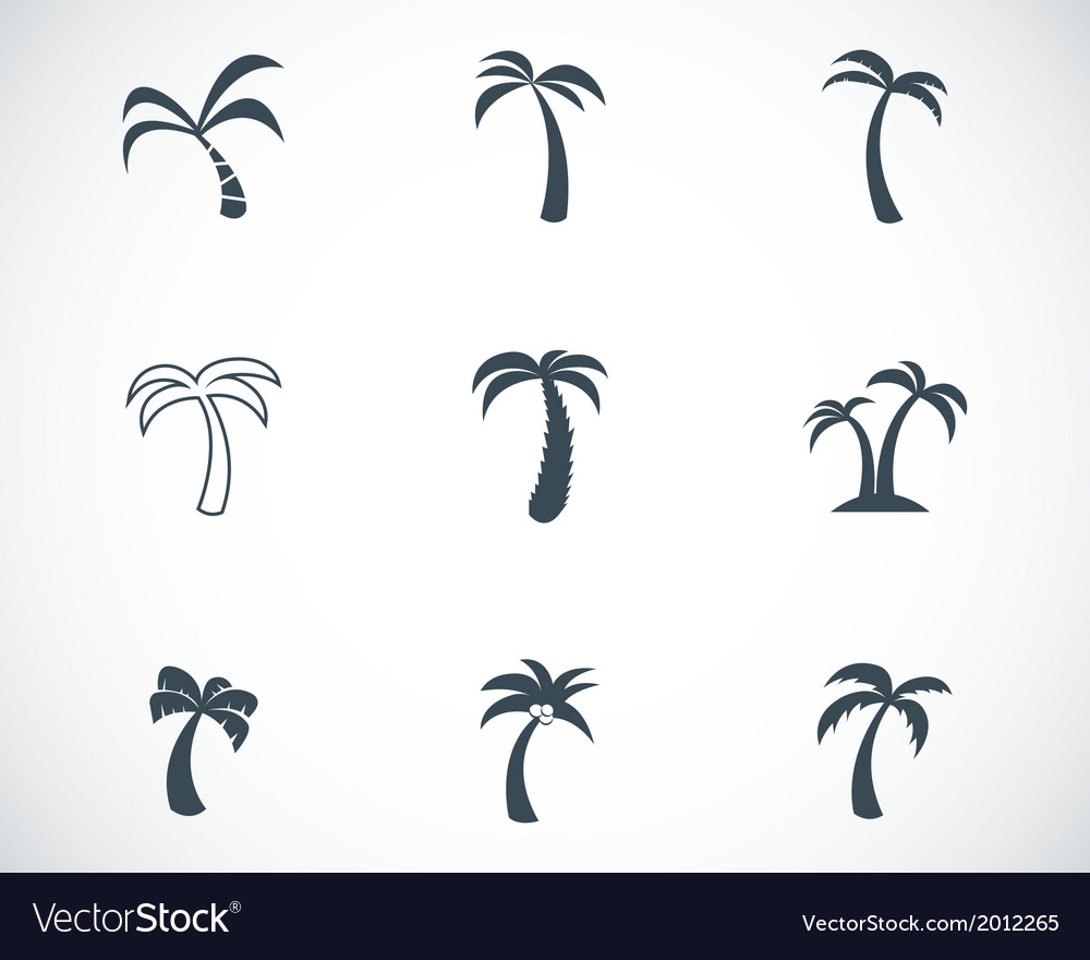 Black palm icons set vector   Price: 1 Credit (USD $1)