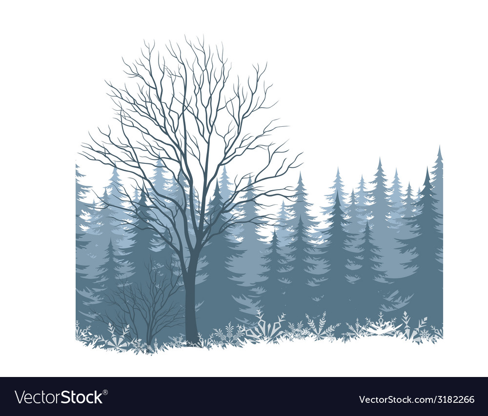 Winter landscape with trees and snow vector | Price: 1 Credit (USD $1)