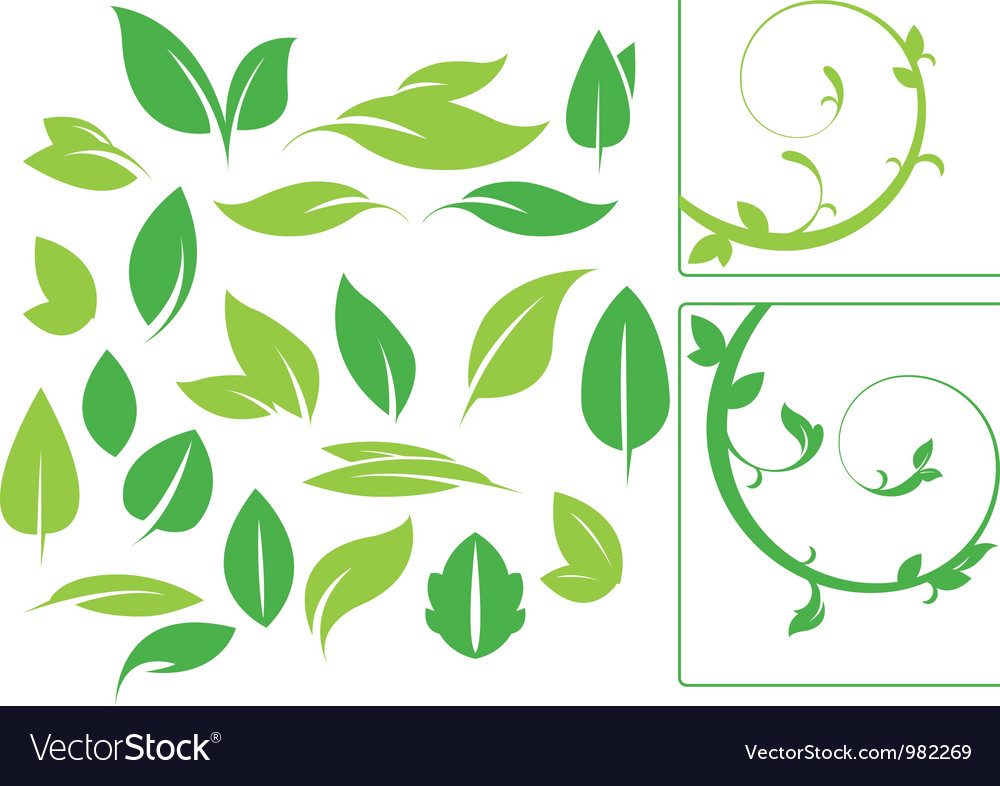 Ultimate greenery set vector