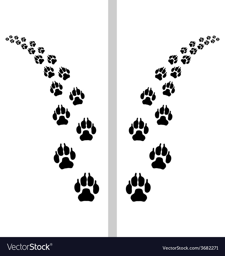 Footstep of dog vector   Price: 1 Credit (USD $1)