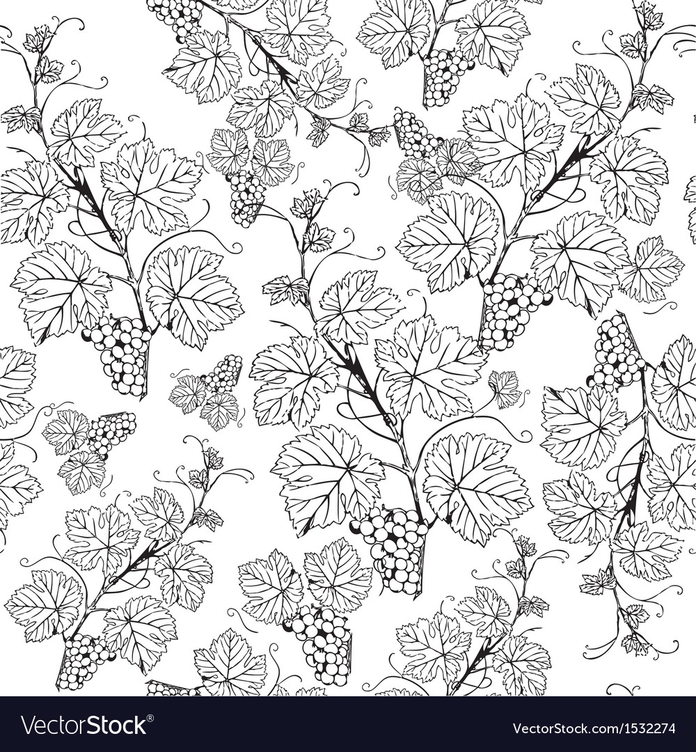 Grape seamless pattern vector | Price: 1 Credit (USD $1)