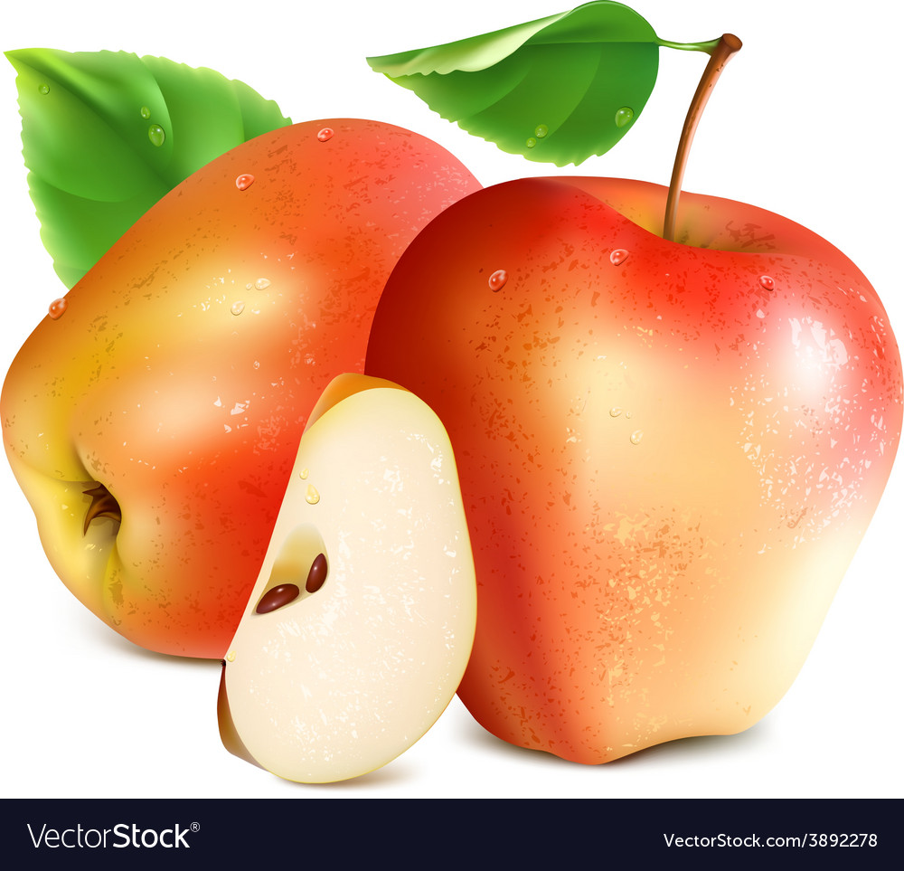 Red apples with slice vector | Price: 3 Credit (USD $3)