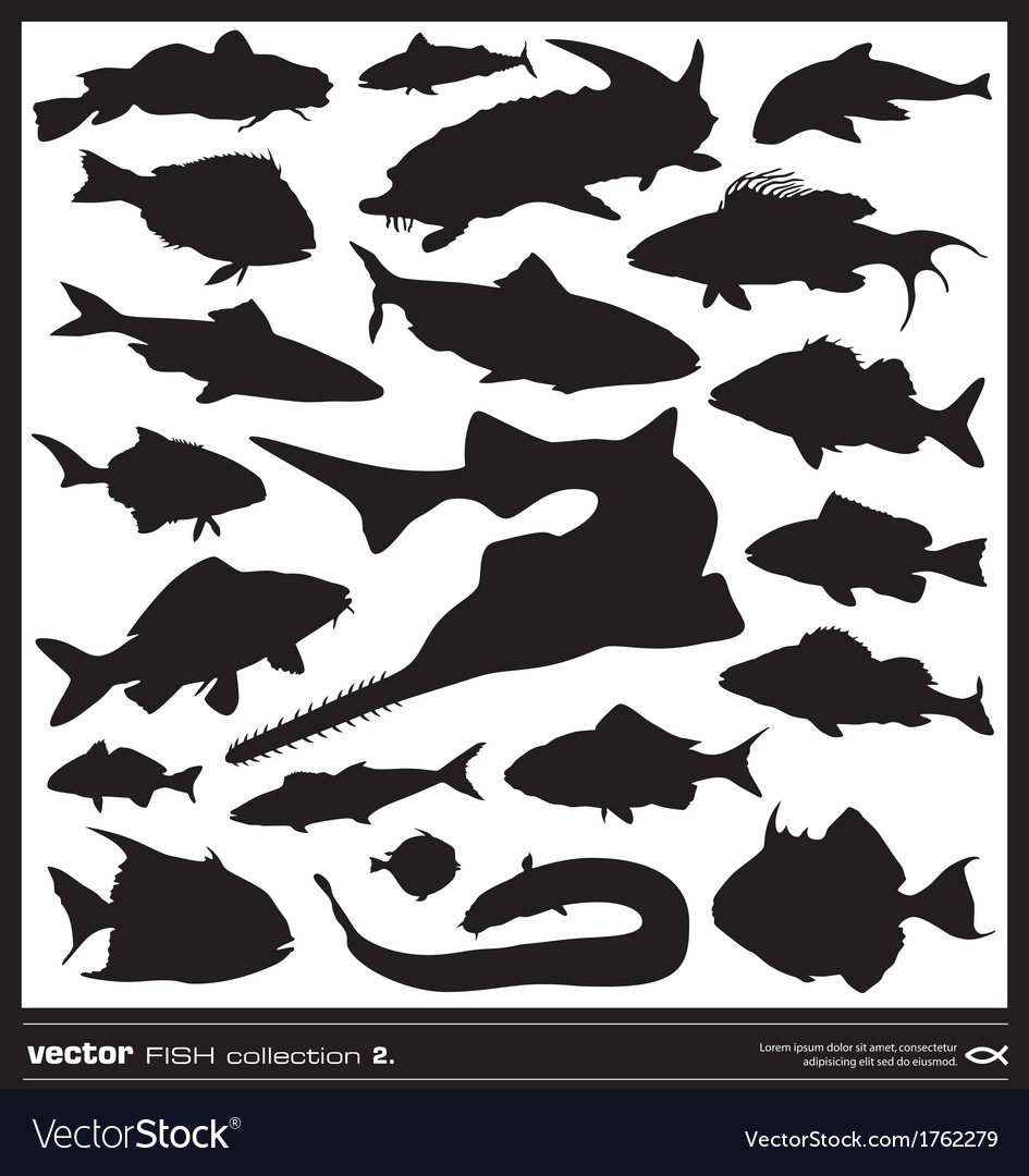 Fish silhouette set vector | Price: 1 Credit (USD $1)