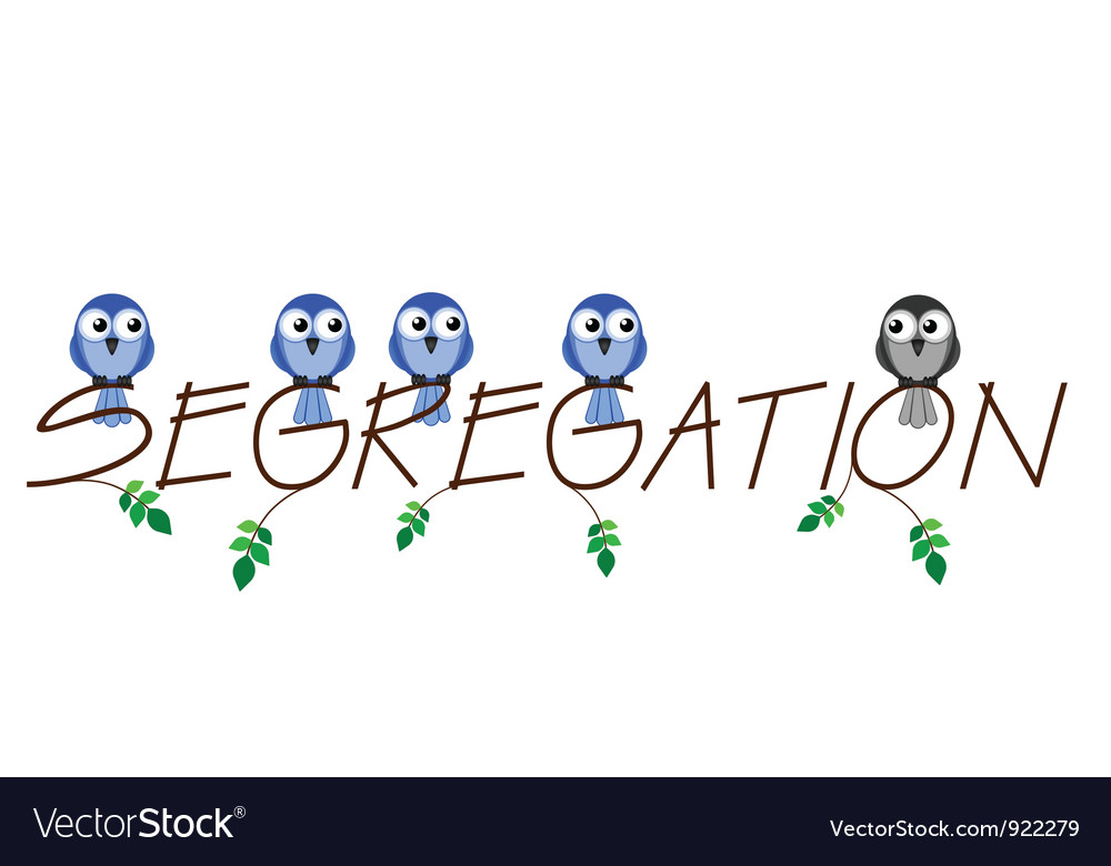Segregation vector | Price: 1 Credit (USD $1)