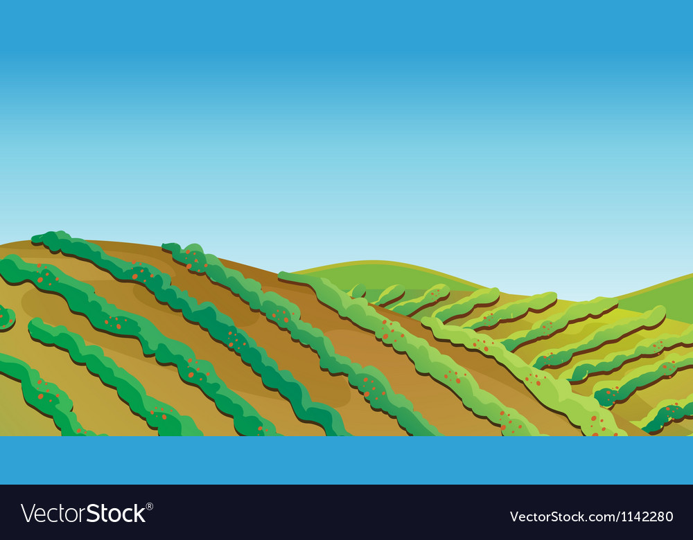 Fertile land vector | Price: 1 Credit (USD $1)
