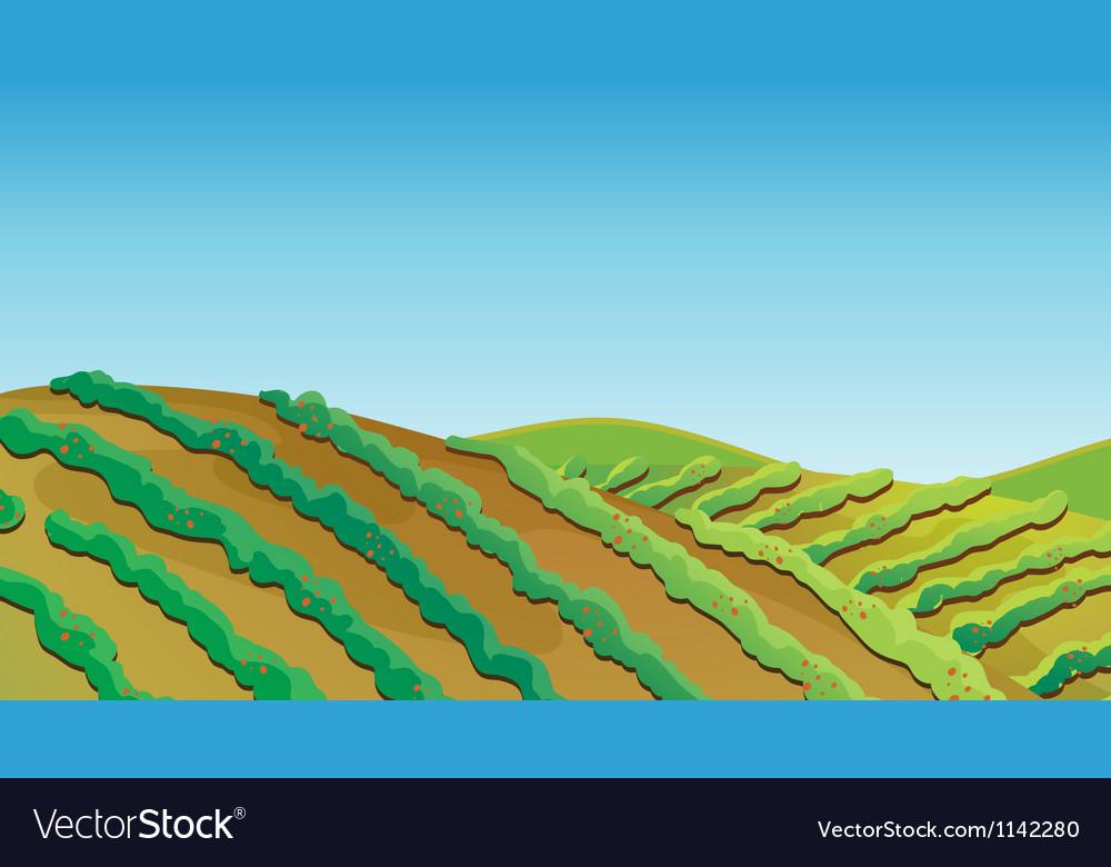 Fertile land vector | Price: 1 Credit (USD $1)