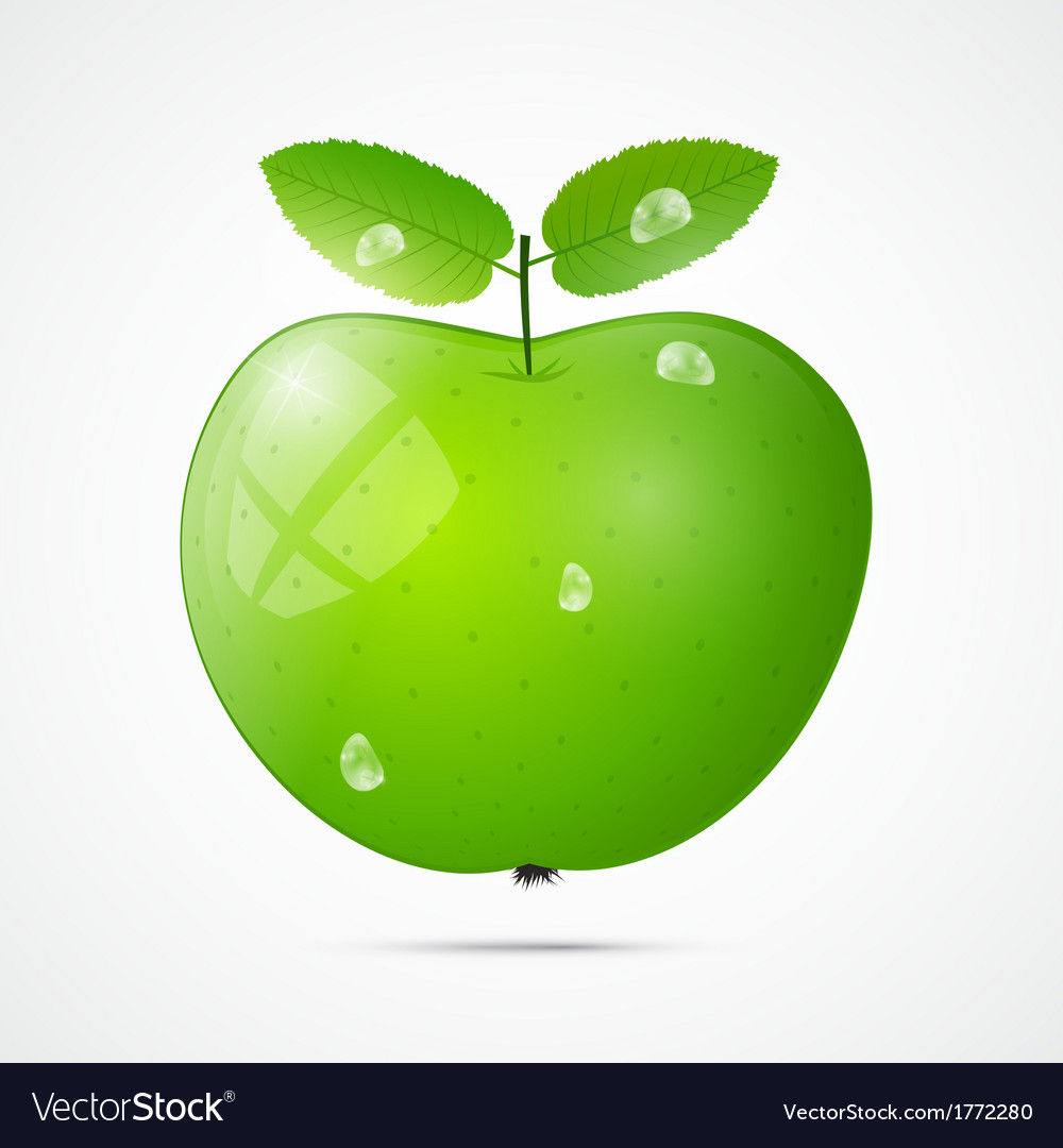 Fresh green apple with water drops vector | Price: 1 Credit (USD $1)