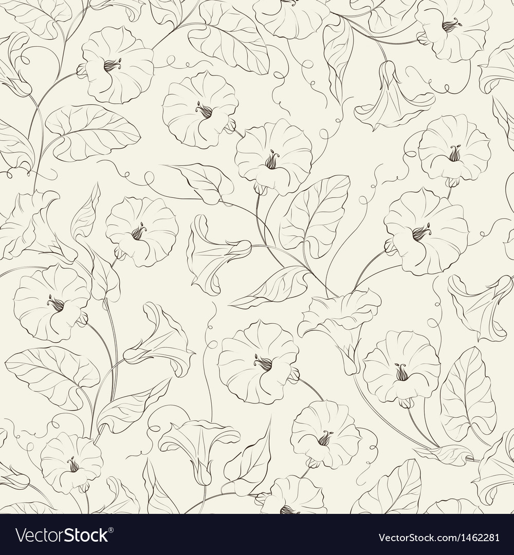 Bindweed flower seamless pattern vector | Price: 1 Credit (USD $1)
