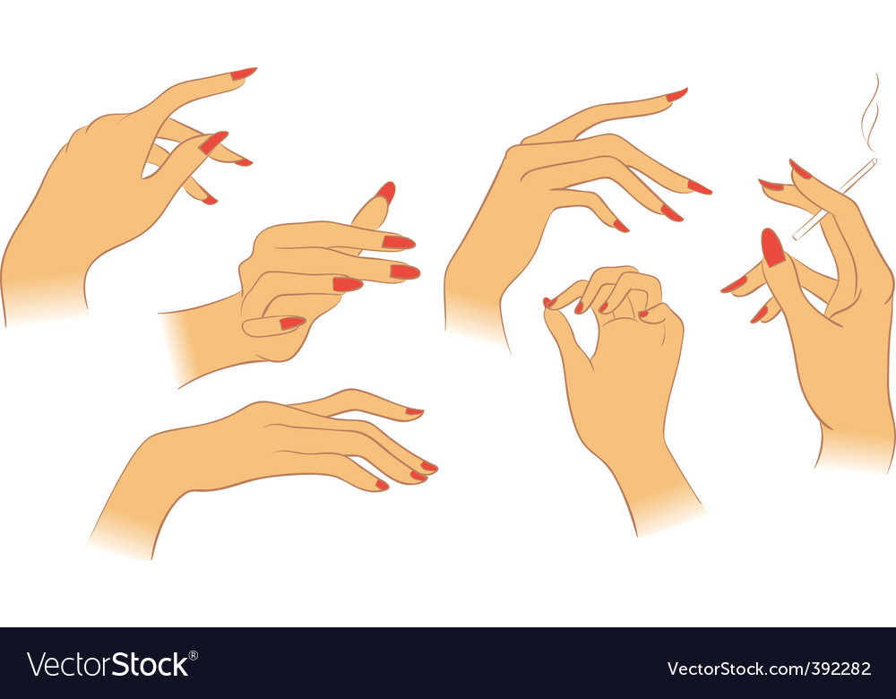 Hands set vector | Price: 1 Credit (USD $1)