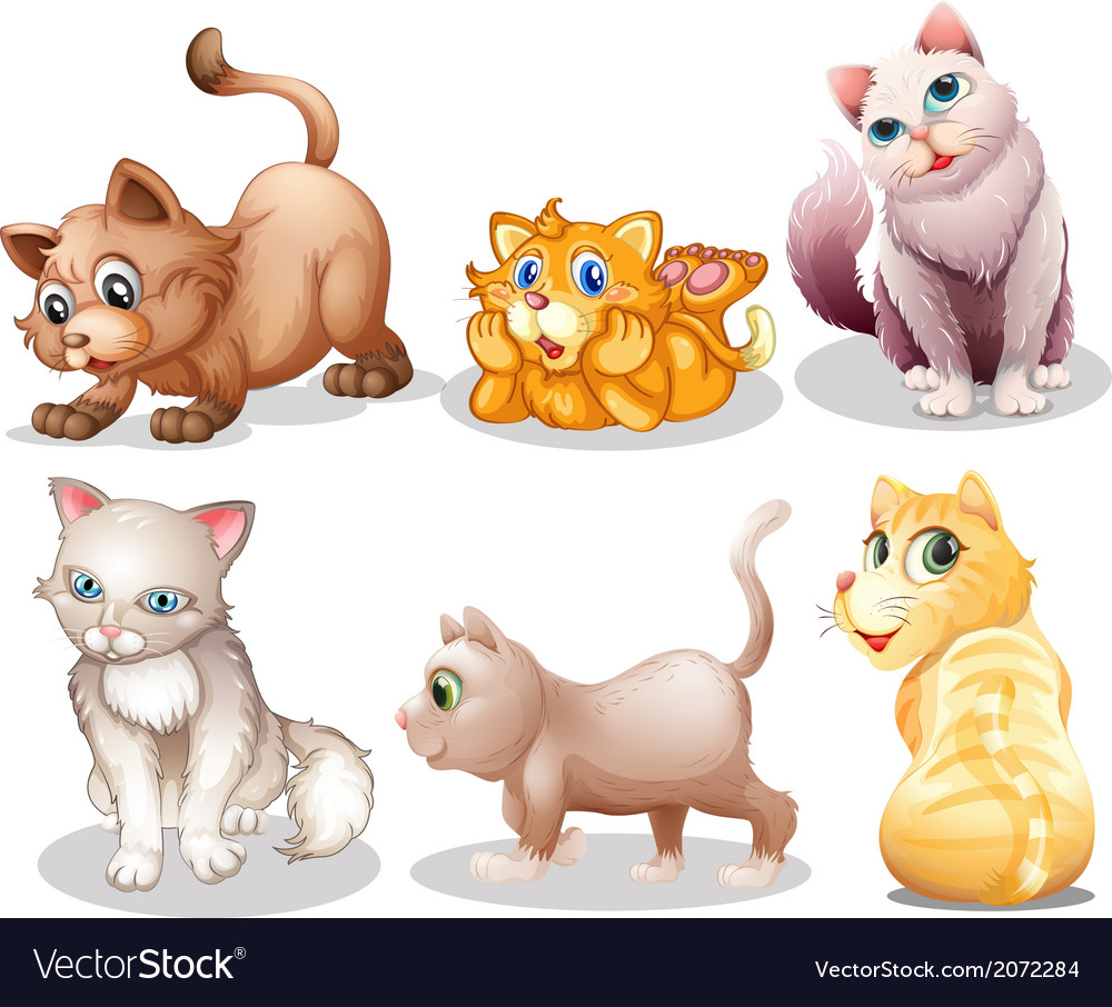Playful cats vector | Price: 1 Credit (USD $1)