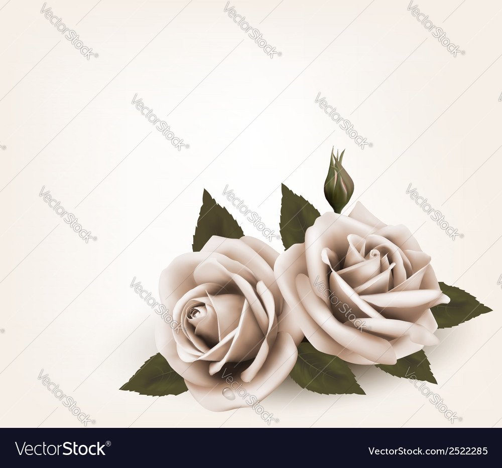 Retro background with pink roses vector | Price: 1 Credit (USD $1)