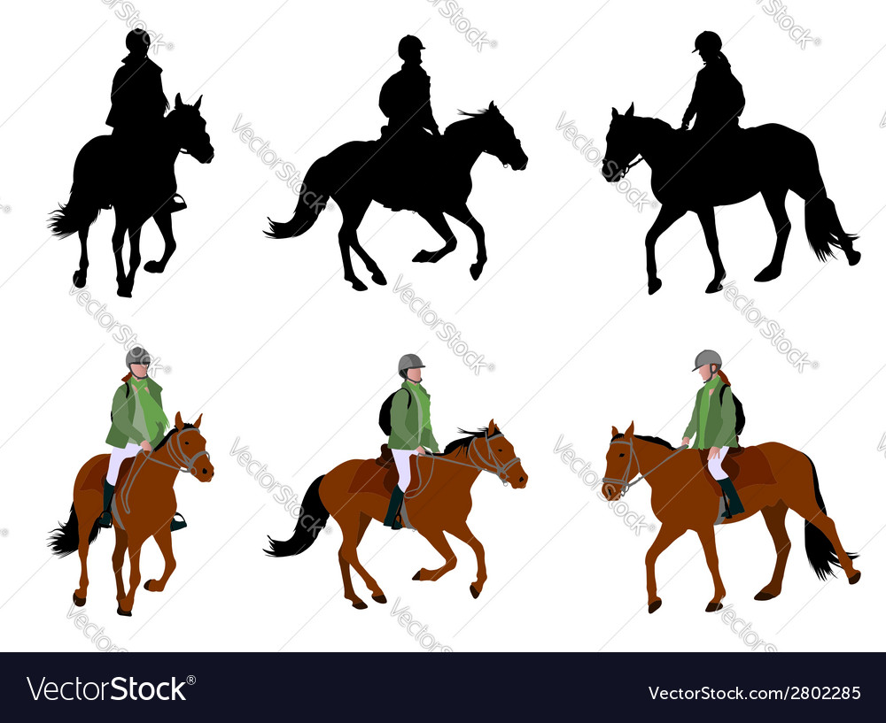 Riding horses vector | Price: 1 Credit (USD $1)