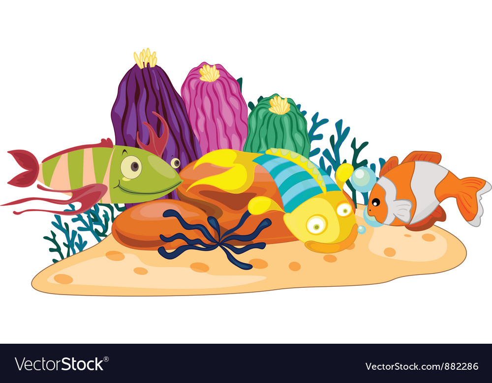 Coral reef fish vector | Price: 5 Credit (USD $5)