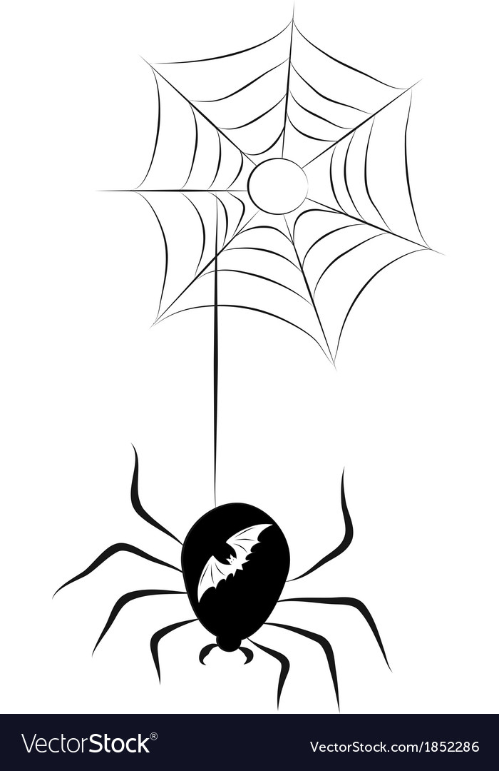 Spider and a web vector | Price: 1 Credit (USD $1)