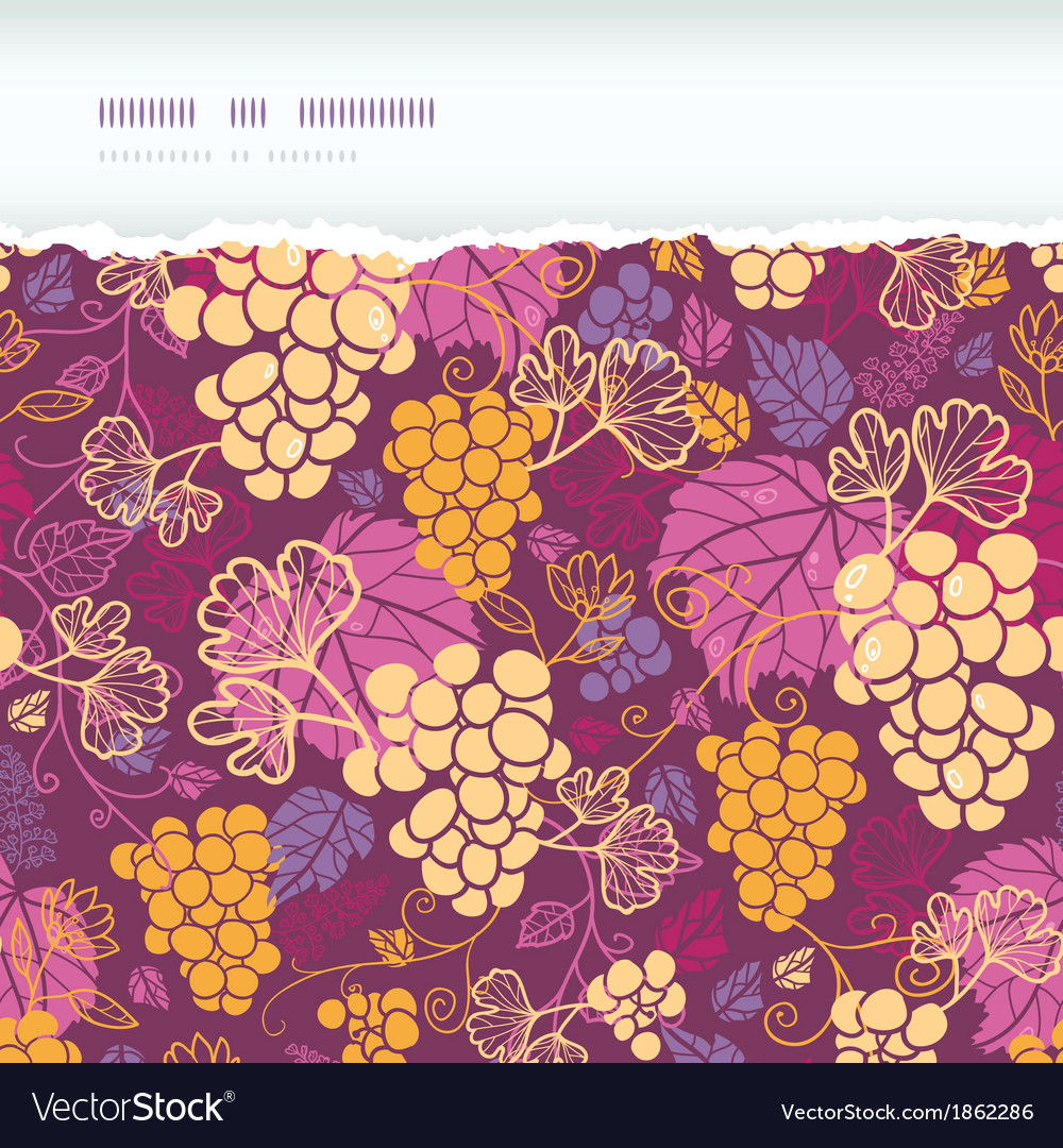 Sweet grape vines horizontal torn border seamless vector | Price: 1 Credit (USD $1)