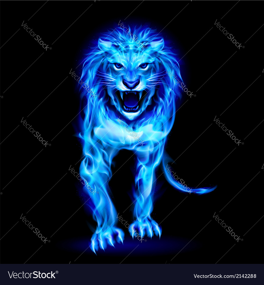 Blue fire lion vector | Price: 1 Credit (USD $1)