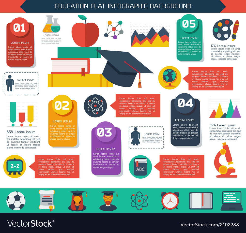 Flat infographic education background vector | Price: 1 Credit (USD $1)