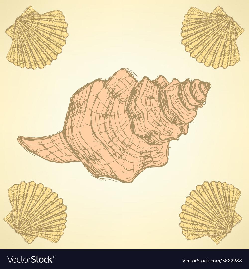 Sketch sea shells in vintage style vector | Price: 1 Credit (USD $1)