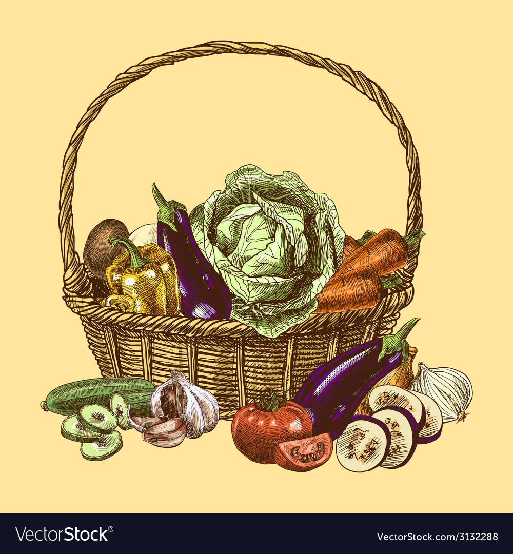 Vegetables sketch color vector | Price: 1 Credit (USD $1)
