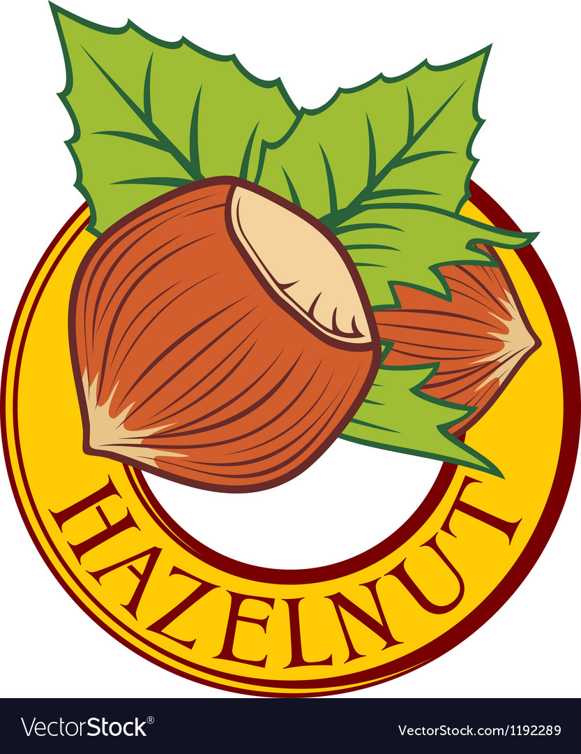 Hazelnut label vector | Price: 1 Credit (USD $1)